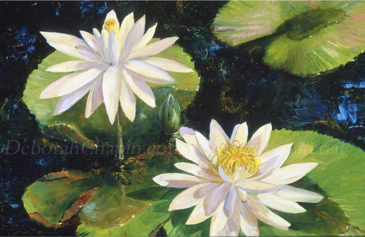 White Water Lilies Psintings, museum floral art canvas giclee