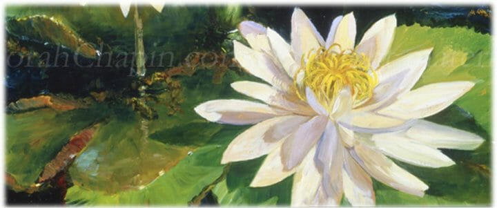 White Water Lillies museum floral art by Deborah Chapin