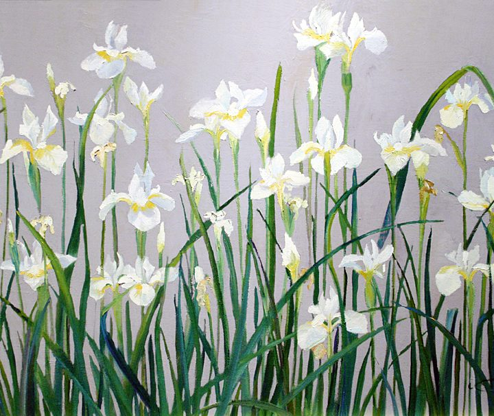 Japanese Flower Paintings , Japanese White Irises, Original is 21x34 plein air oil, Deborah Chapin
