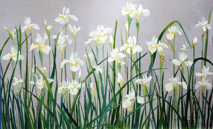 Japanese Flower Paintings , Japanese White Irises, Original is 21×34 plein air oil, Deborah Chapin