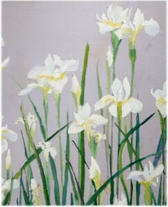painting auction, Japanese White Irises, 16x24 plein air oil, Deborah Chapin