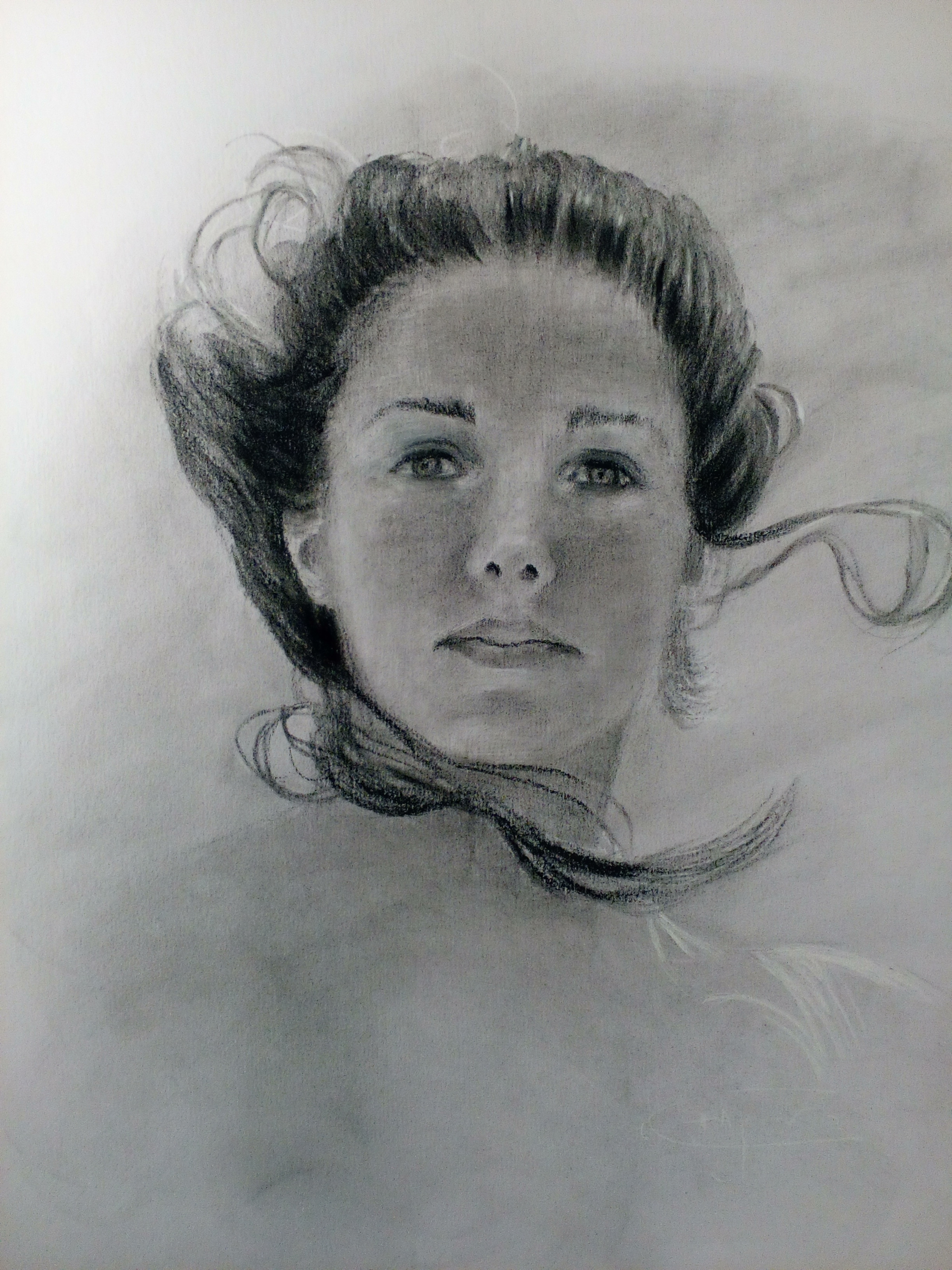 Charcoal Drawings, original drawings by Deborah Chapin