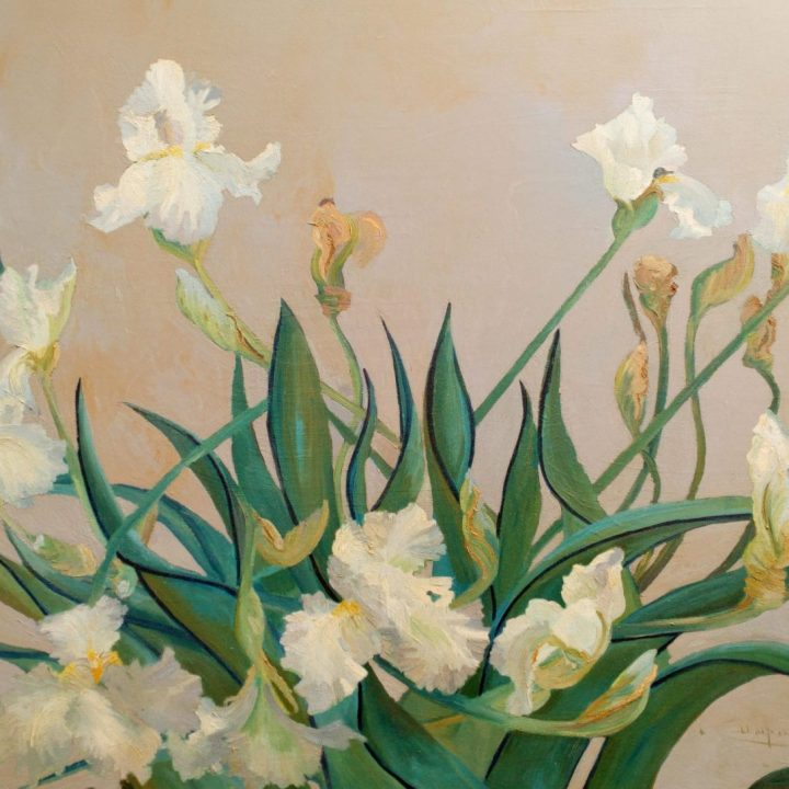 White Irises, Floral Art, The original painting is available, was painted on a prepared background after a rain. Large bearded white iris weighted down with rain.  Having been tossed about from the storm, continues to bloom and produce flowers on the weather worn stalks bent and twisted. Contact Us About This Piece please include the title in your subject line.