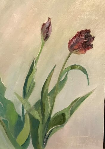 Maine Art Studio Black Parrot Tulip 1 , 12x17 oil by Deborah Chapin, exhibited at the Damariscotta River Arts June 2019