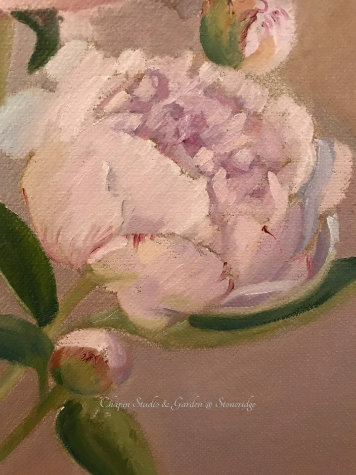 Peonies, pink cream floral painting by Deborah Chapin closeup 2