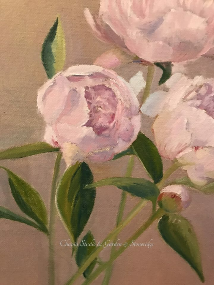 Peonies, pink cream floral painting by Deborah Chapin closeup 1