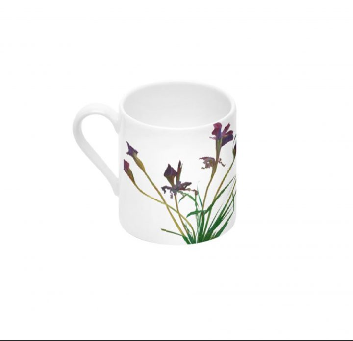 Set of 4 - Custom Espresso Cups, Siberian Irises, Coffee Cups by Deborah Chapin