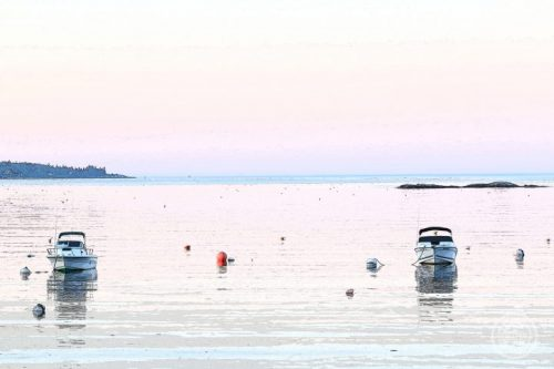Pemaquid Harbor at Dawn Metal Print Illustration by Deborah Chapin