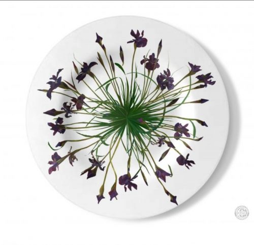 Tea Platter or Decorative Plate, Siberian Irises by Deborah Chapin