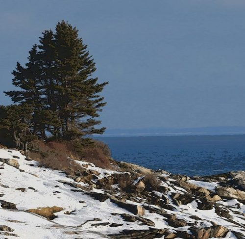 Pemaquid Point Winter by Deborah Chapin, Illustration Metal Print Book of Maine Project