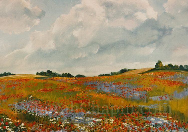 Landscape Original Print Lithograph Poppies Wildflowers ~ Chapin. PoppiesPoppies and Cornflowers, 18x24 original Lithograph by Deborah Chapin
